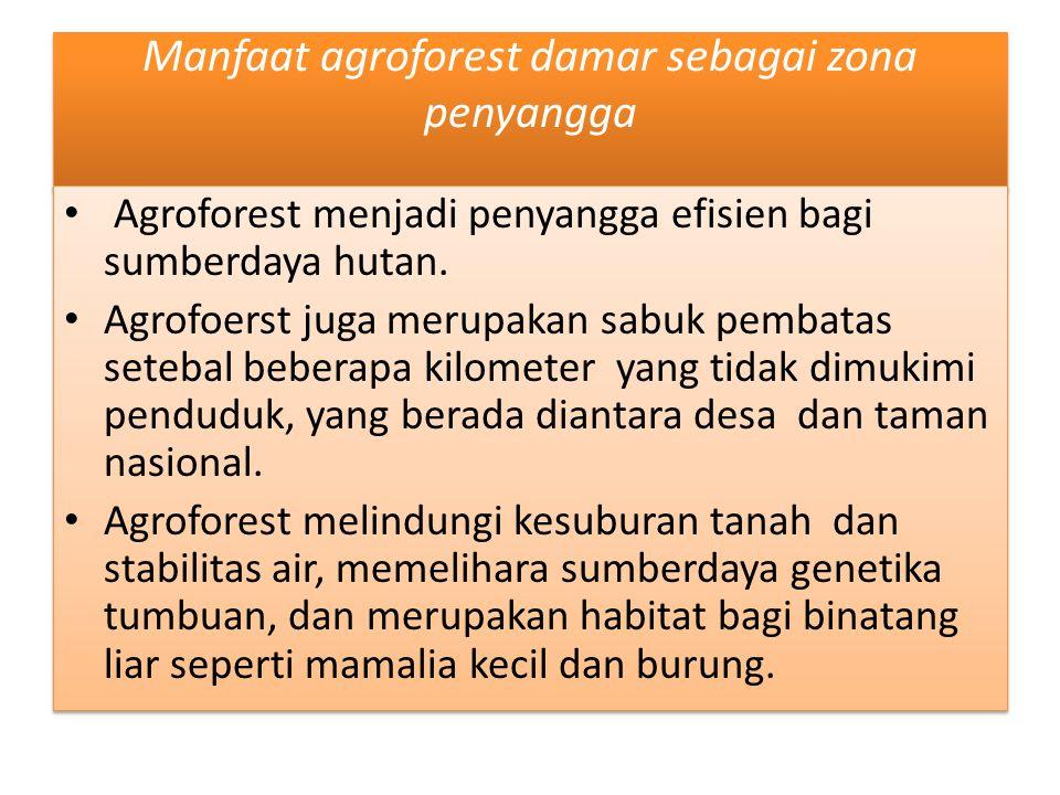 Manfaat agroforest damar sebagai zona penyangga