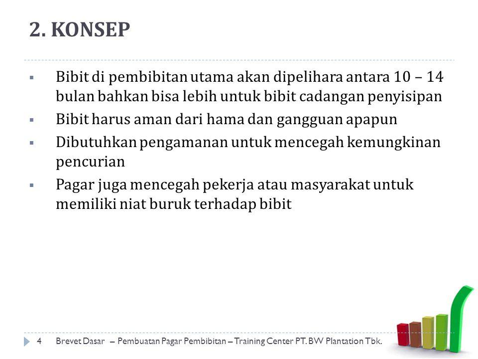 2. KONSEP Bibit di pembibitan utama akan dipelihara antara 10 – 14 bulan bahkan bisa lebih untuk bibit cadangan penyisipan.