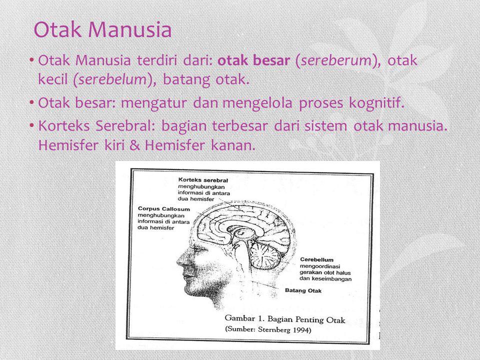Otak Manusia Otak Manusia terdiri dari: otak besar (sereberum), otak kecil (serebelum), batang otak.