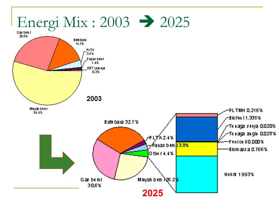 Energi Mix : 2003  2025 2003 2025
