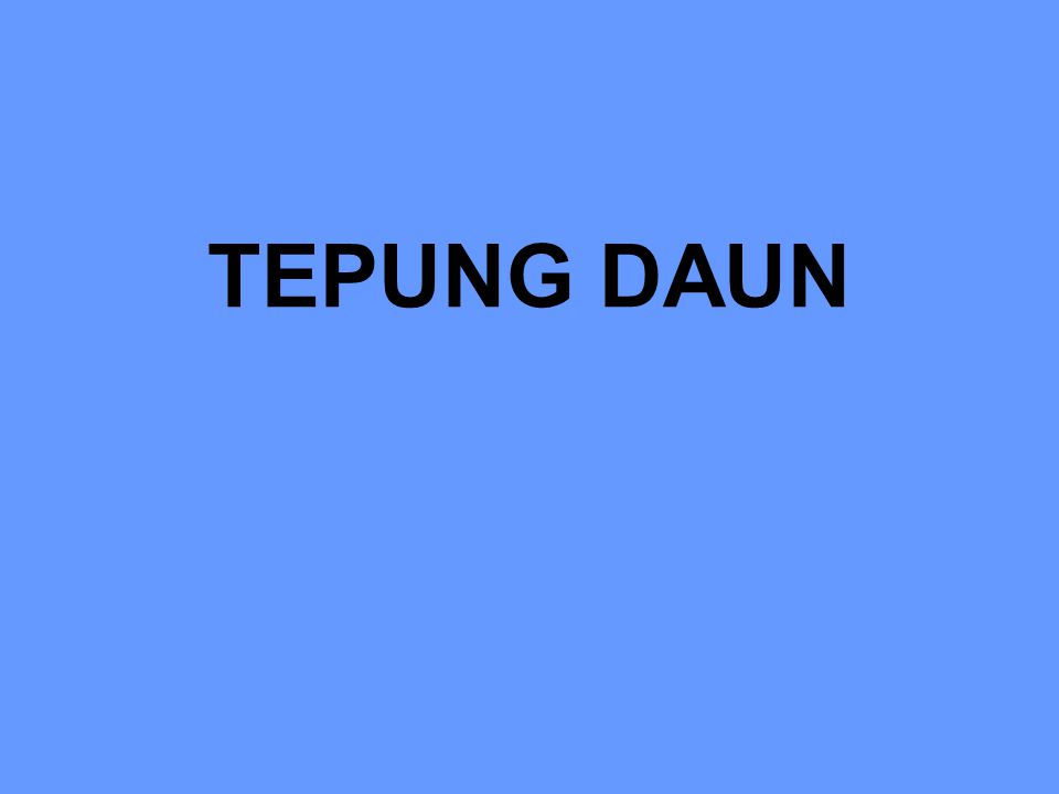 TEPUNG DAUN