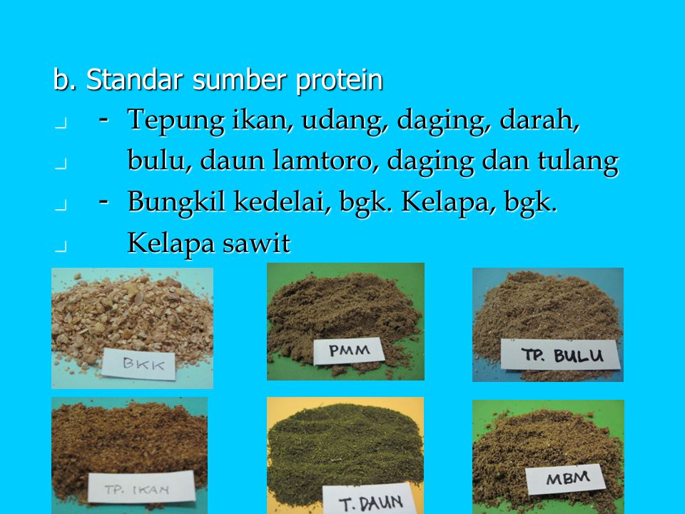 b. Standar sumber protein