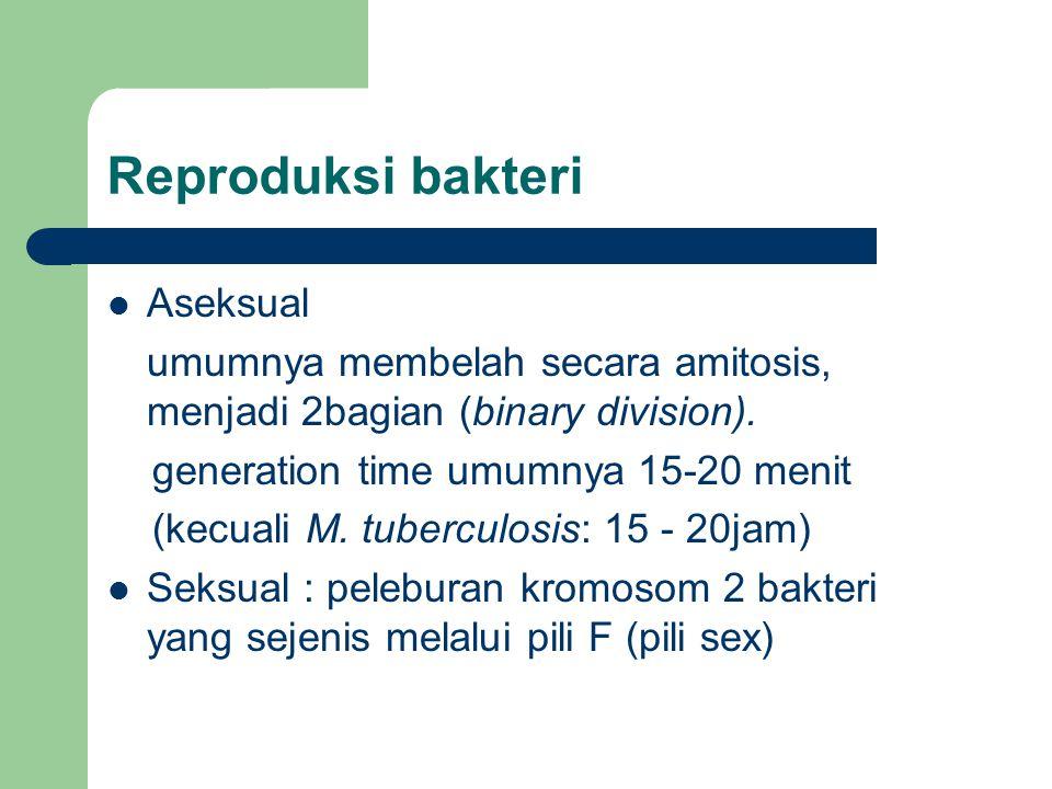 Reproduksi bakteri Aseksual