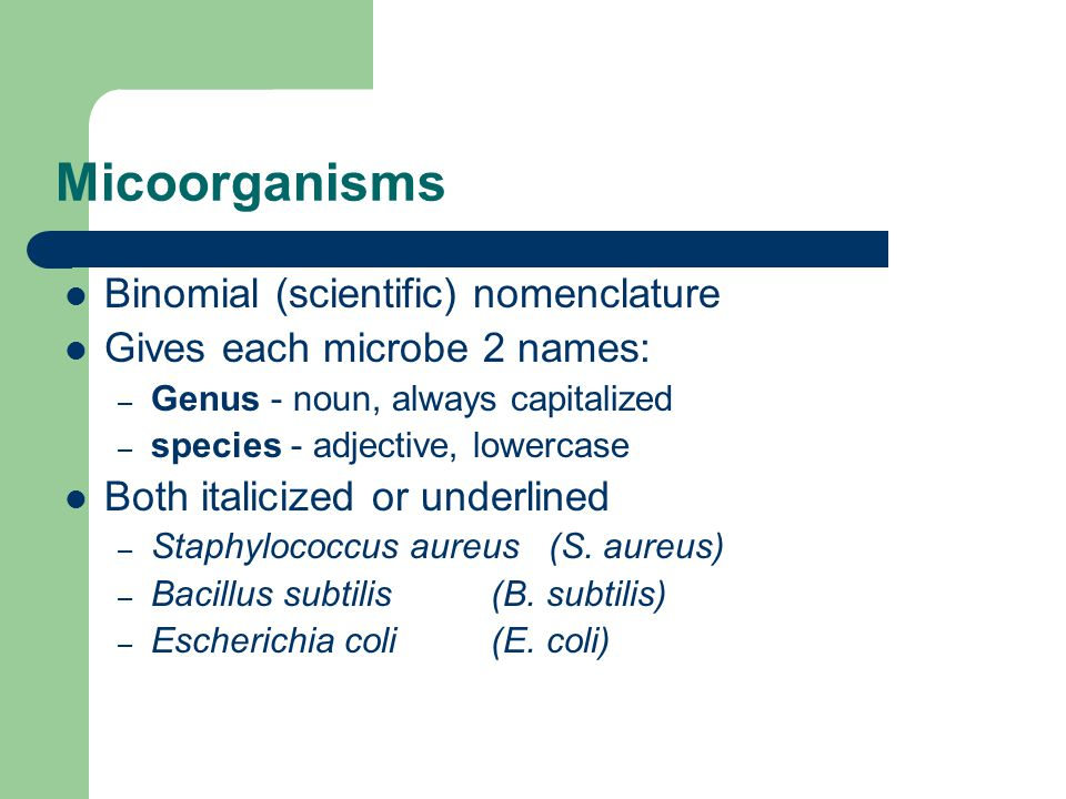 Micoorganisms Binomial (scientific) nomenclature