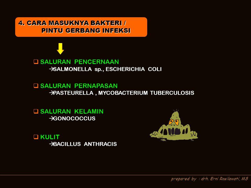 4. CARA MASUKNYA BAKTERI / PINTU GERBANG INFEKSI