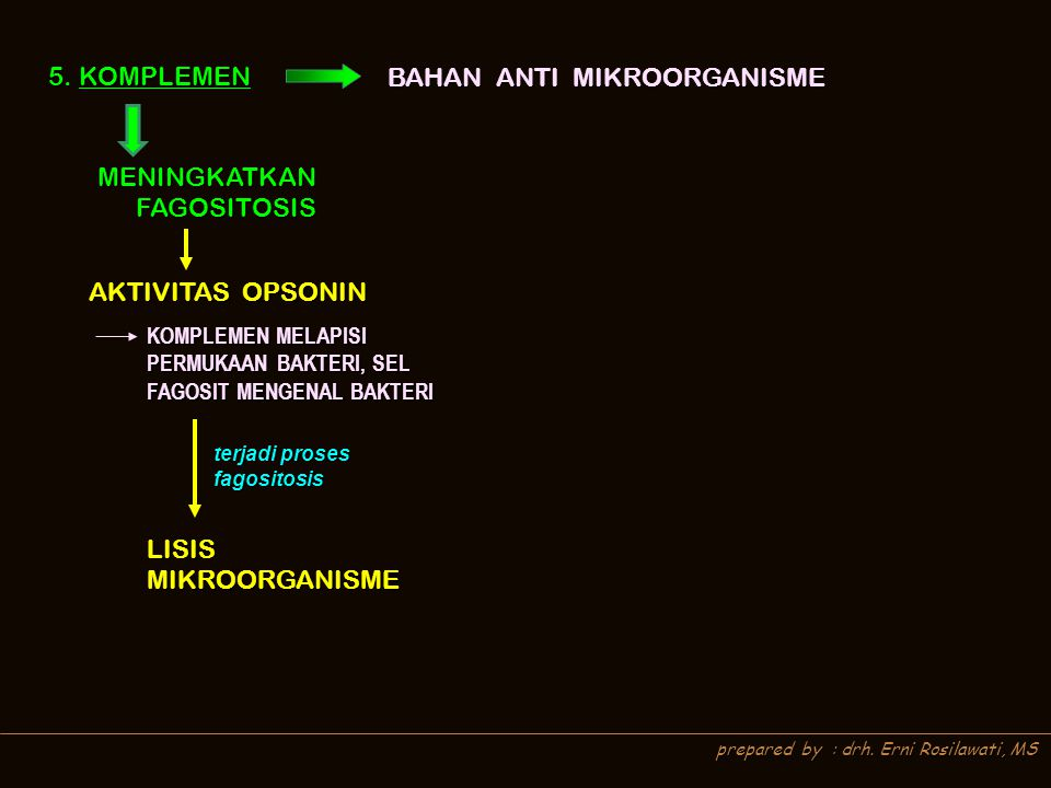 BAHAN ANTI MIKROORGANISME
