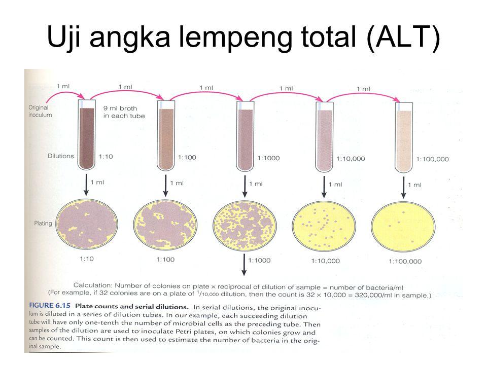 Uji angka lempeng total (ALT)