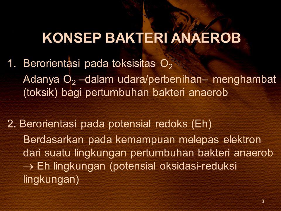 KONSEP BAKTERI ANAEROB
