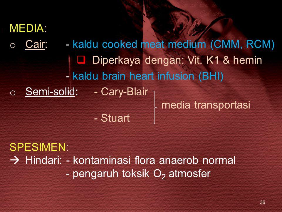 MEDIA: Cair: - kaldu cooked meat medium (CMM, RCM) Diperkaya dengan: Vit. K1 & hemin. - kaldu brain heart infusion (BHI)