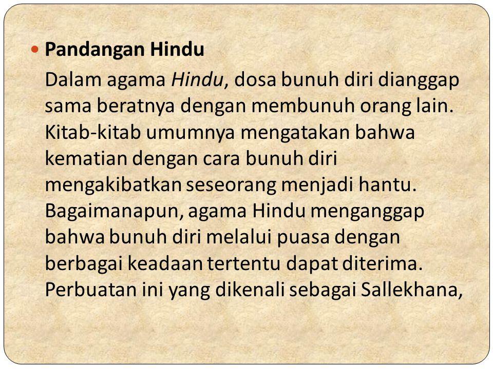 Pandangan Hindu