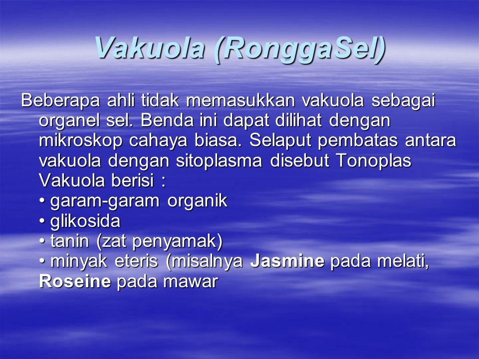 Vakuola (RonggaSel)