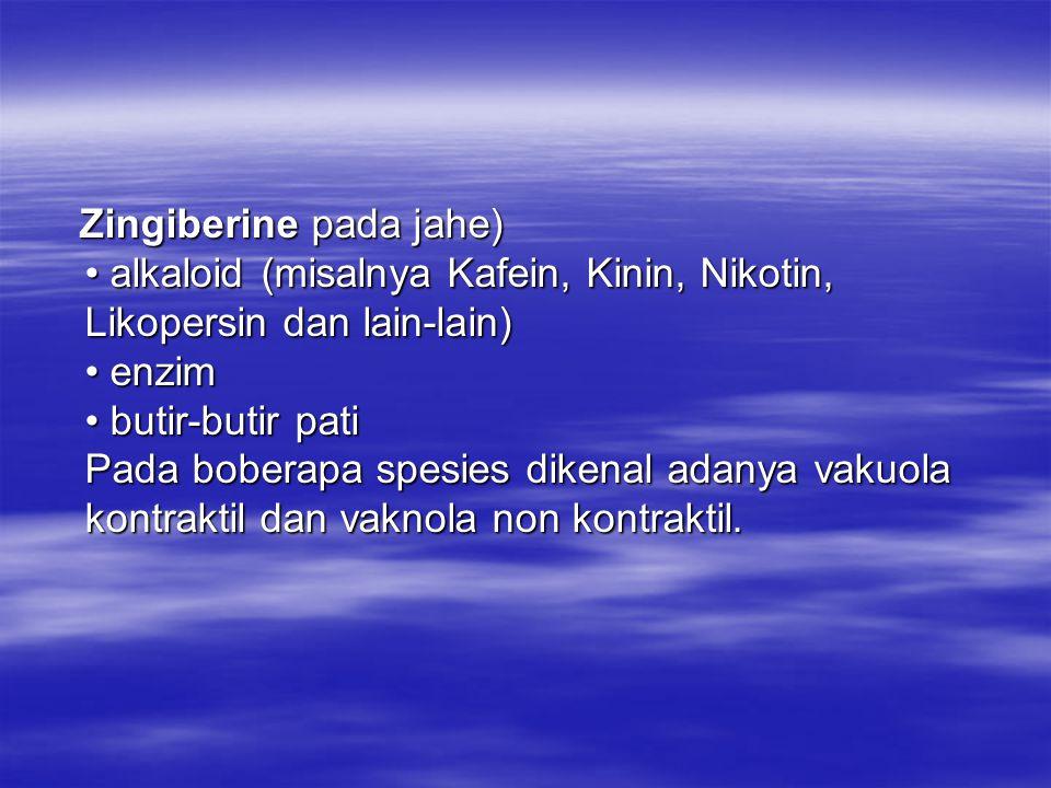 Zingiberine pada jahe) • alkaloid (misalnya Kafein, Kinin, Nikotin, Likopersin dan lain-lain) • enzim • butir-butir pati Pada boberapa spesies dikenal adanya vakuola kontraktil dan vaknola non kontraktil.