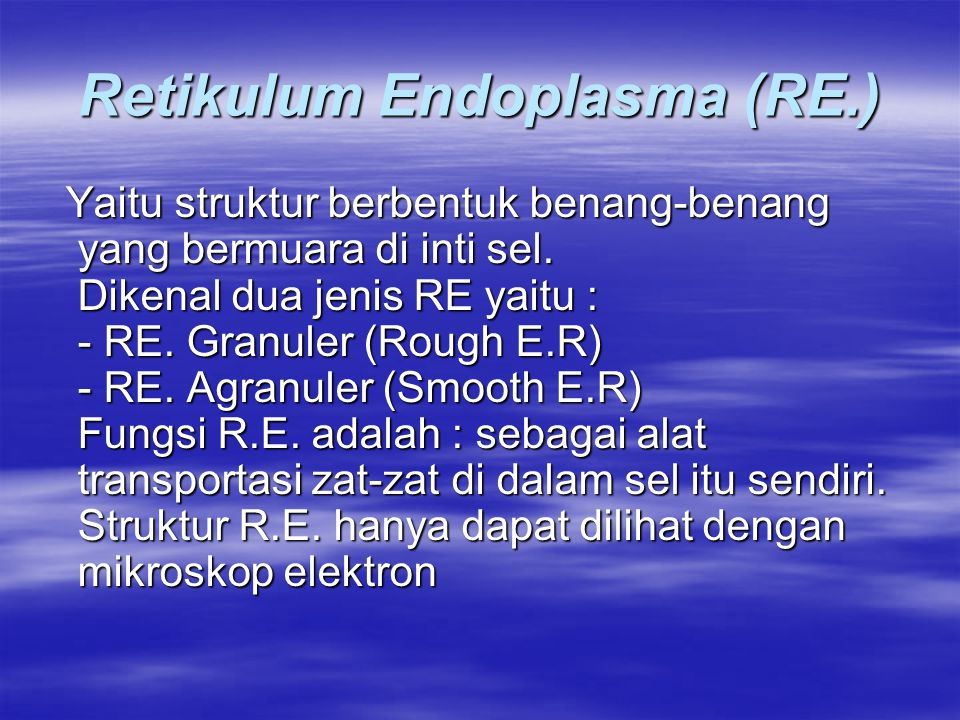 Retikulum Endoplasma (RE.)