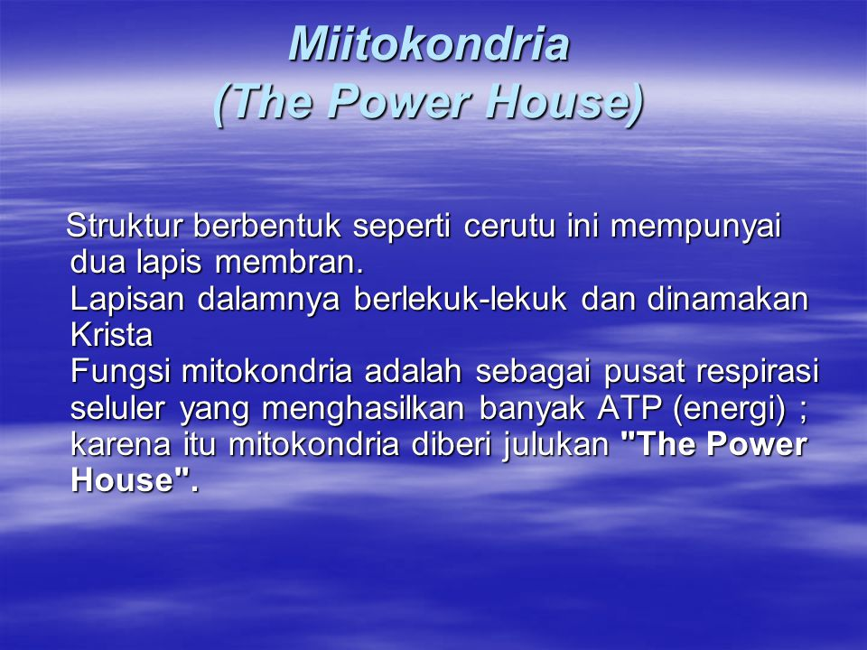 Miitokondria (The Power House)