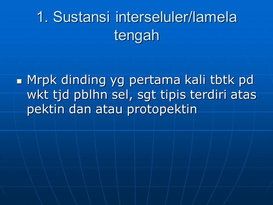 1. Sustansi interseluler/lamela tengah