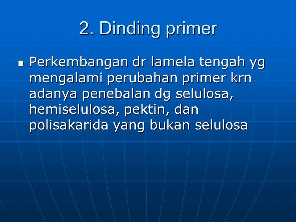 2. Dinding primer