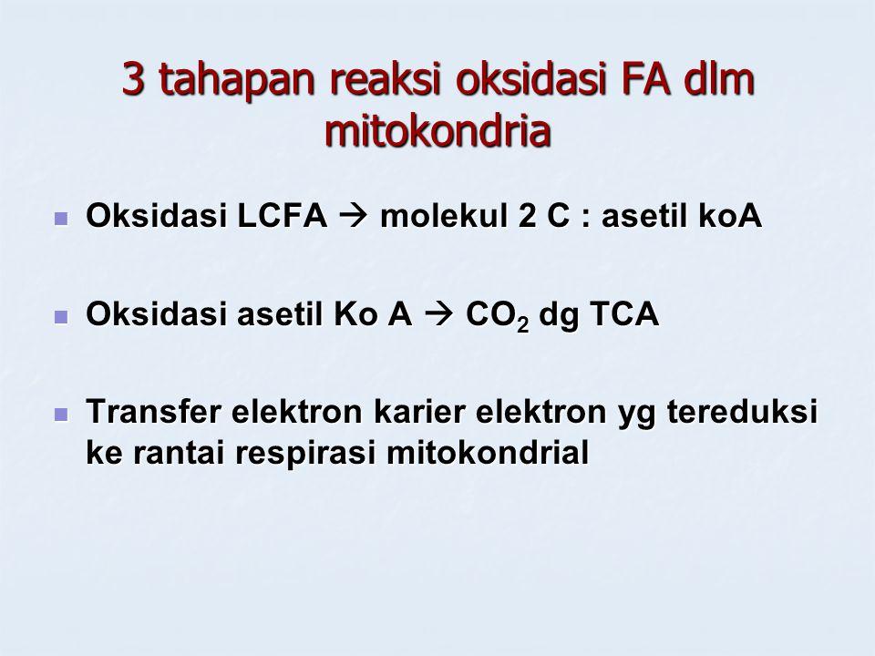 3 tahapan reaksi oksidasi FA dlm mitokondria