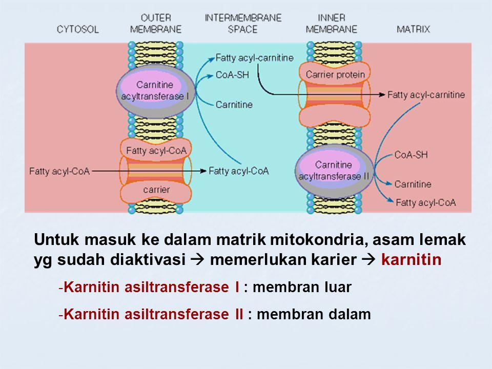 Untuk masuk ke dalam matrik mitokondria, asam lemak yg sudah diaktivasi  memerlukan karier  karnitin