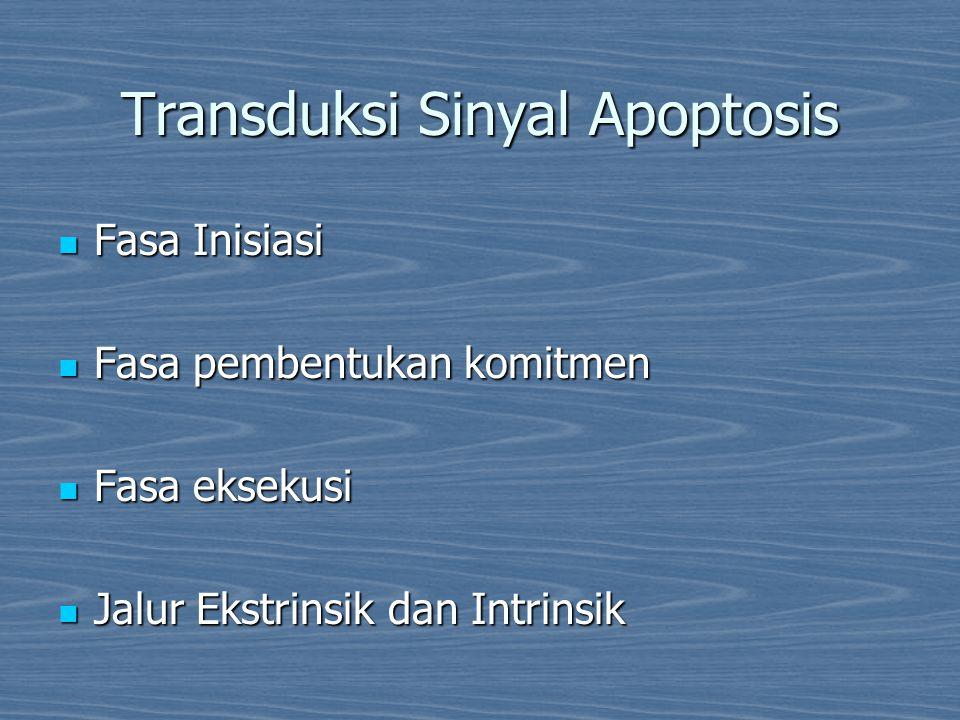 Transduksi Sinyal Apoptosis