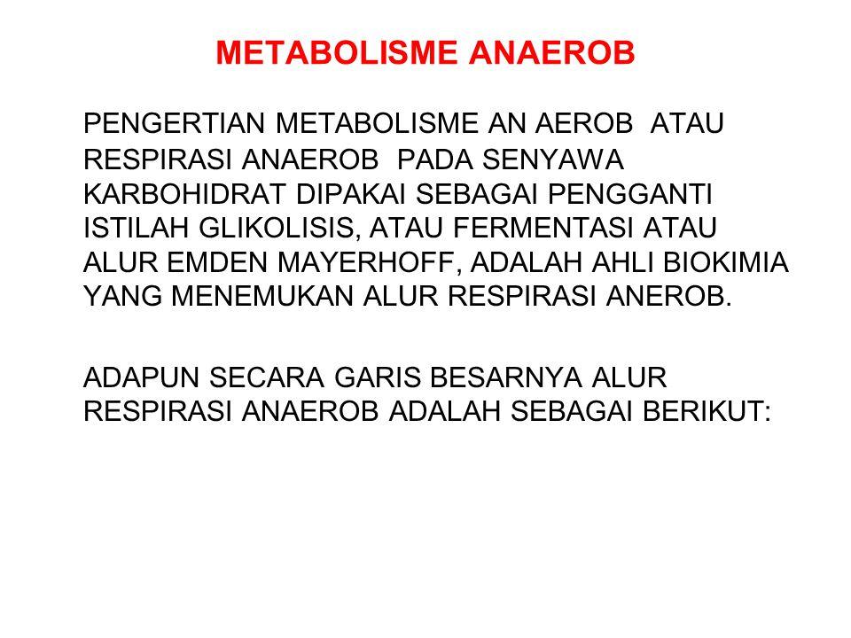 METABOLISME ANAEROB