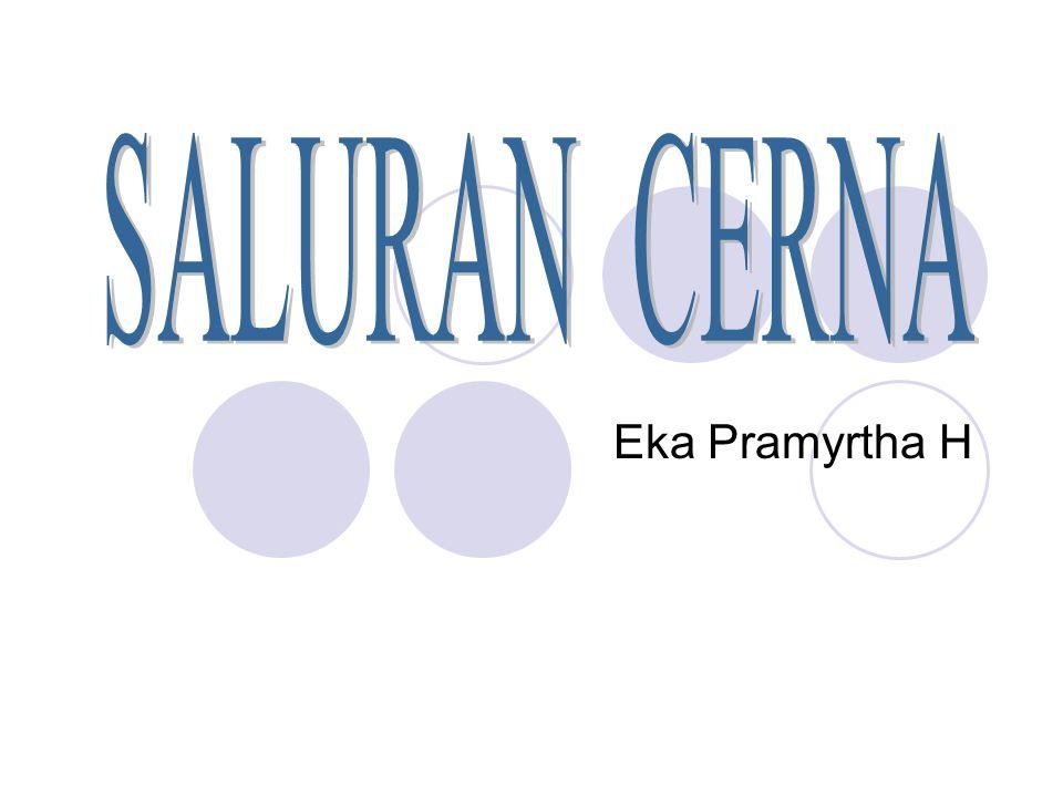 SALURAN CERNA Eka Pramyrtha H