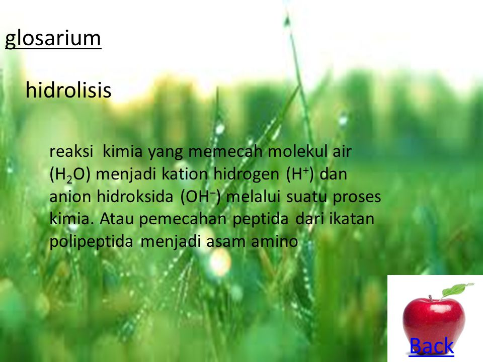 glosarium hidrolisis Back