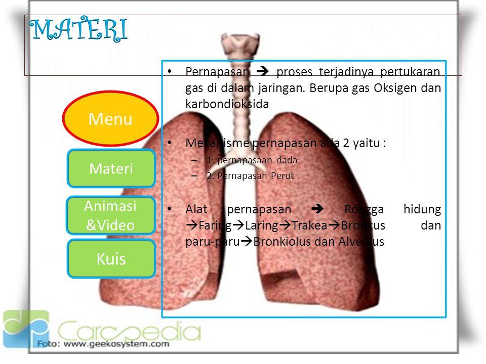 MATERI Pernapasan  proses terjadinya pertukaran gas di dalam jaringan. Berupa gas Oksigen dan karbondioksida.
