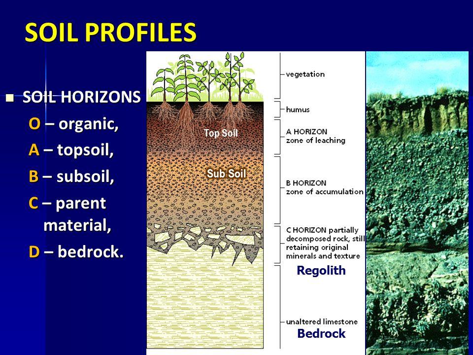 SOIL PROFILES SOIL HORIZONS O – organic, A – topsoil, B – subsoil,