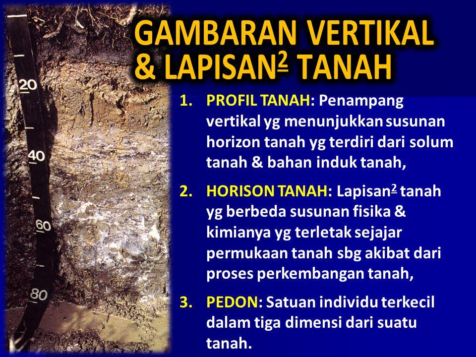 GAMBARAN VERTIKAL & LAPISAN2 TANAH
