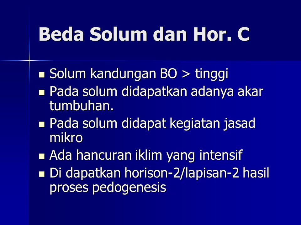 Beda Solum dan Hor. C Solum kandungan BO > tinggi