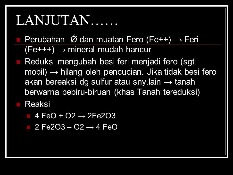 LANJUTAN…… Perubahan Ǿ dan muatan Fero (Fe++) → Feri (Fe+++) → mineral mudah hancur.