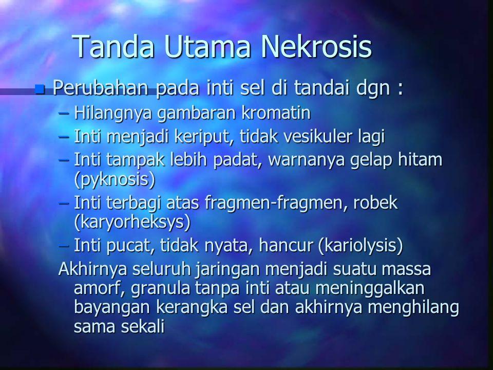 Tanda Utama Nekrosis Perubahan pada inti sel di tandai dgn :