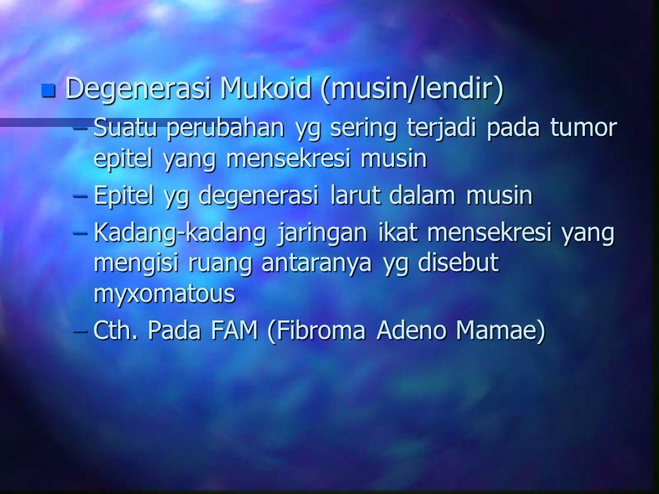 Degenerasi Mukoid (musin/lendir)