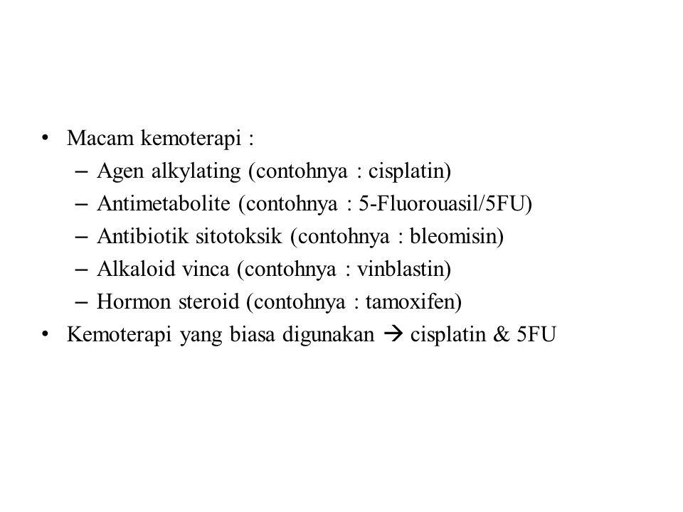 Macam kemoterapi : Agen alkylating (contohnya : cisplatin) Antimetabolite (contohnya : 5-Fluorouasil/5FU)
