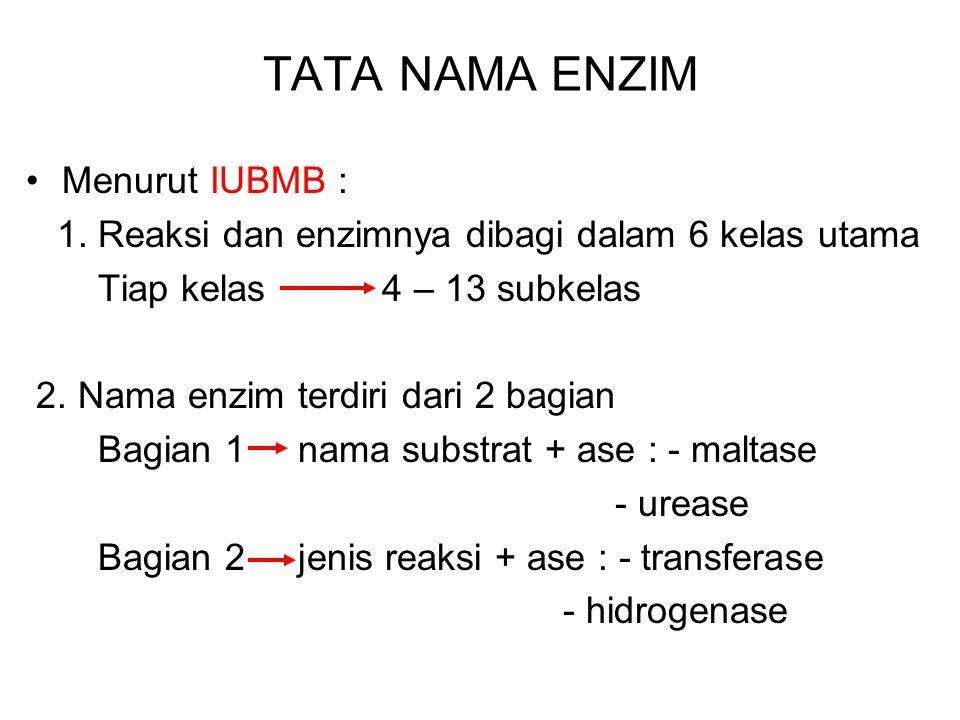TATA NAMA ENZIM Menurut IUBMB :