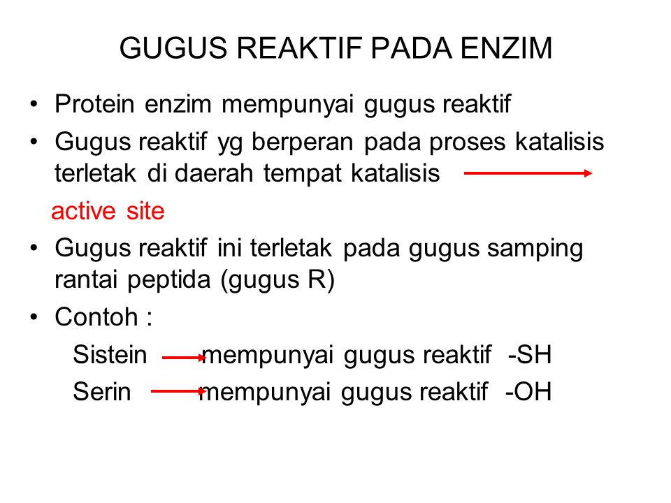GUGUS REAKTIF PADA ENZIM