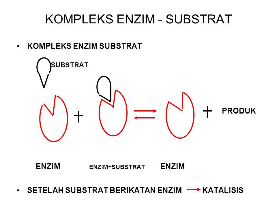 KOMPLEKS ENZIM - SUBSTRAT