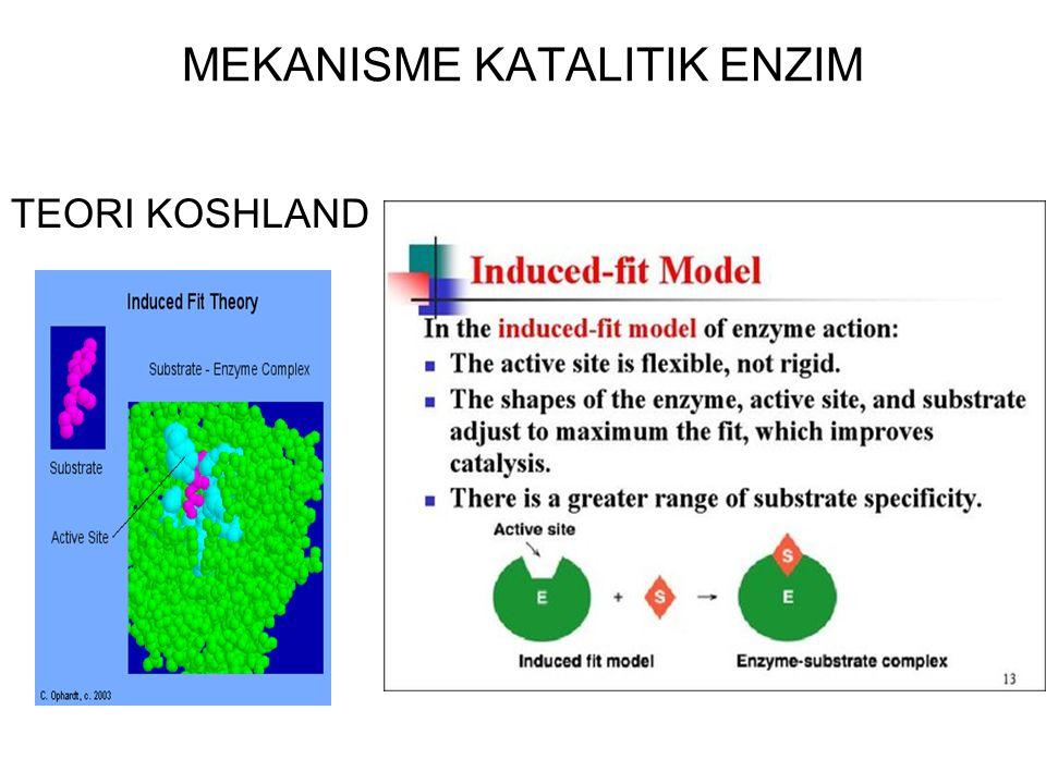 MEKANISME KATALITIK ENZIM