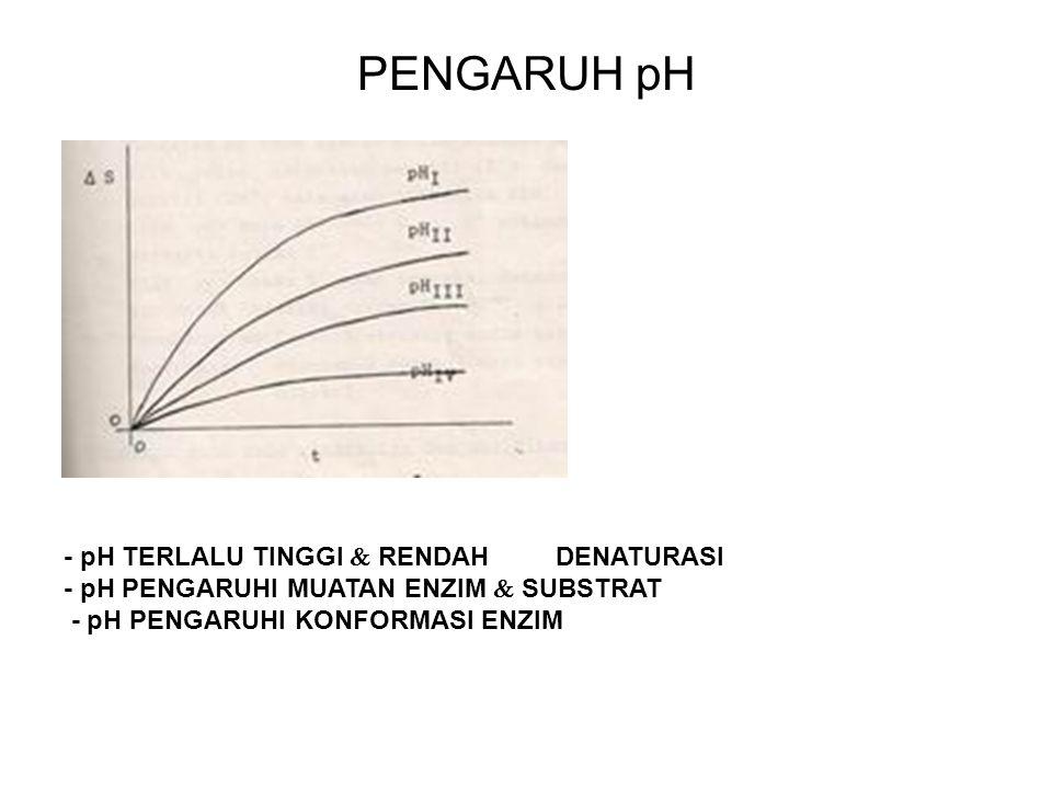 PENGARUH pH - pH TERLALU TINGGI  RENDAH DENATURASI