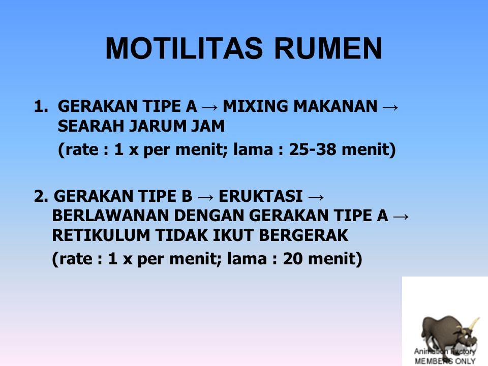 MOTILITAS RUMEN GERAKAN TIPE A → MIXING MAKANAN → SEARAH JARUM JAM