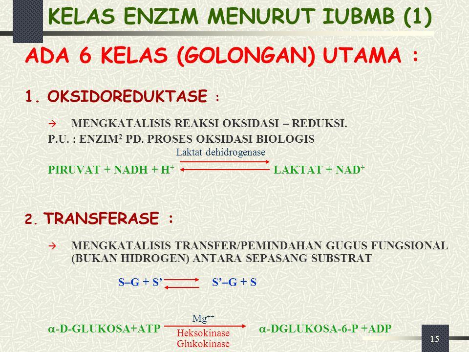 KELAS ENZIM MENURUT IUBMB (1)