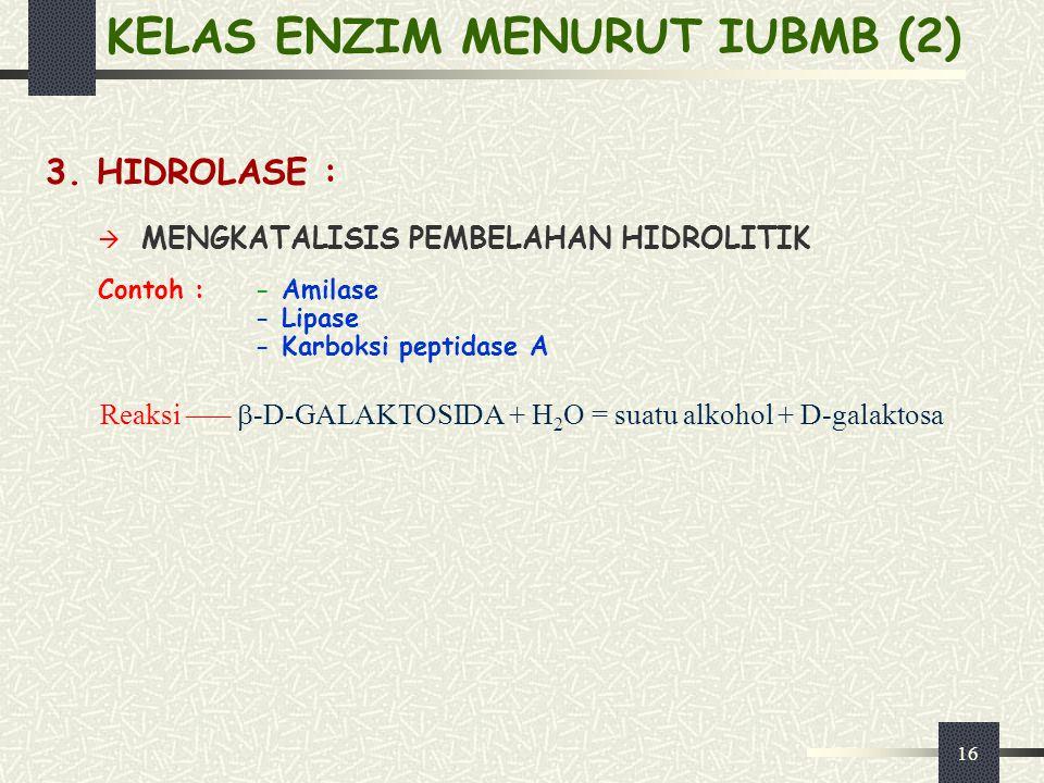 KELAS ENZIM MENURUT IUBMB (2)