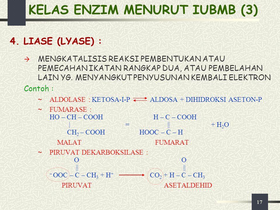 KELAS ENZIM MENURUT IUBMB (3)