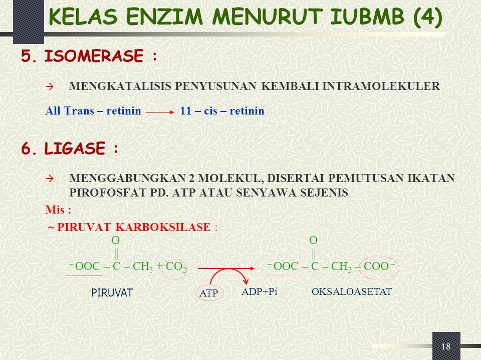 KELAS ENZIM MENURUT IUBMB (4)