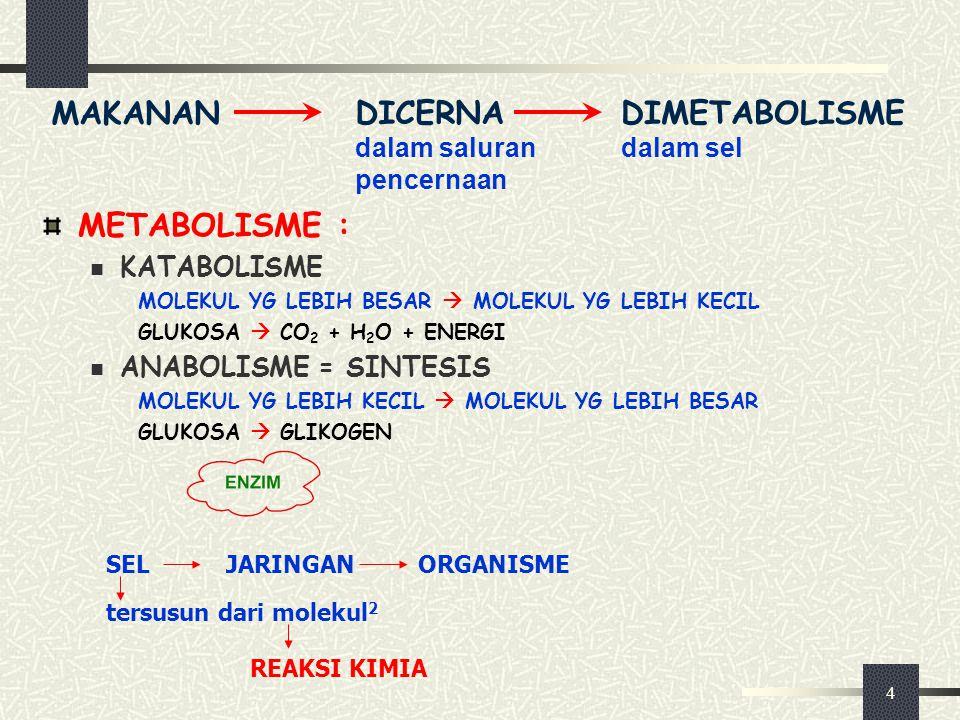 DICERNA dalam saluran pencernaan DIMETABOLISME dalam sel
