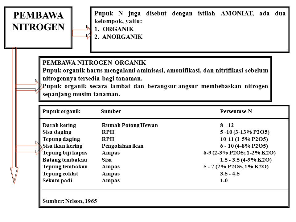 PEMBAWA NITROGEN Pupuk N juga disebut dengan istilah AMONIAT, ada dua kelompok, yaitu: 1. ORGANIK.