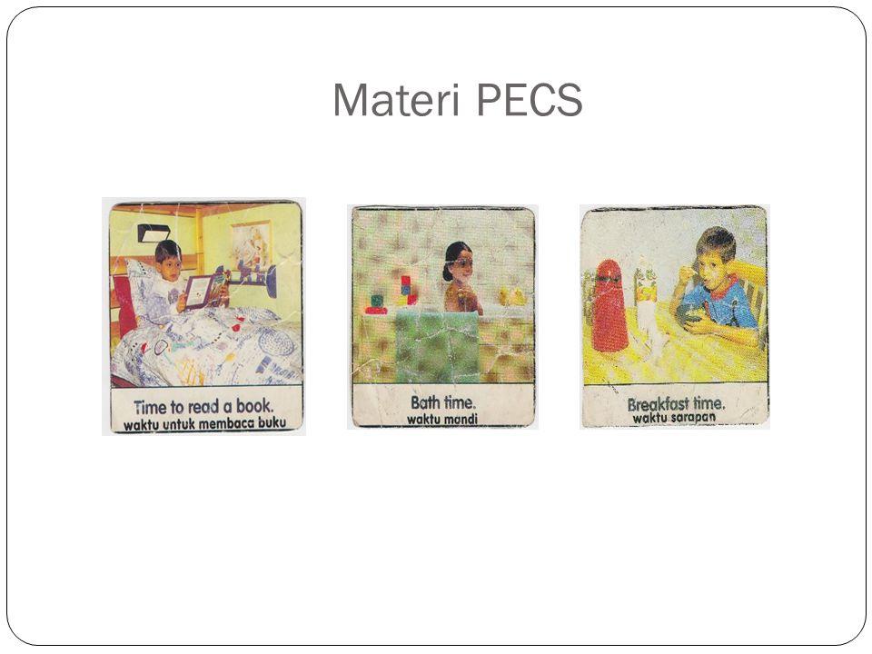 Materi PECS