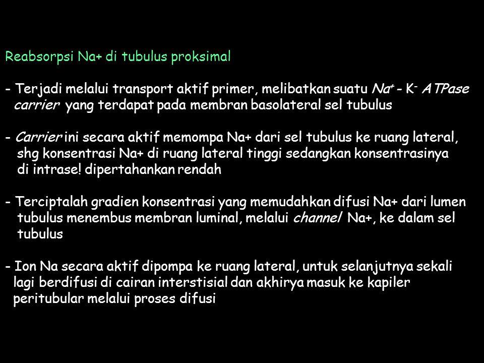 Reabsorpsi Na+ di tubulus proksimal