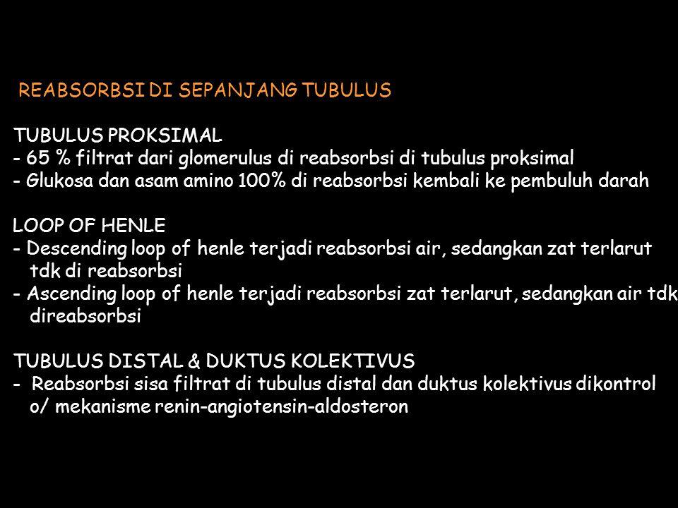 REABSORBSI DI SEPANJANG TUBULUS
