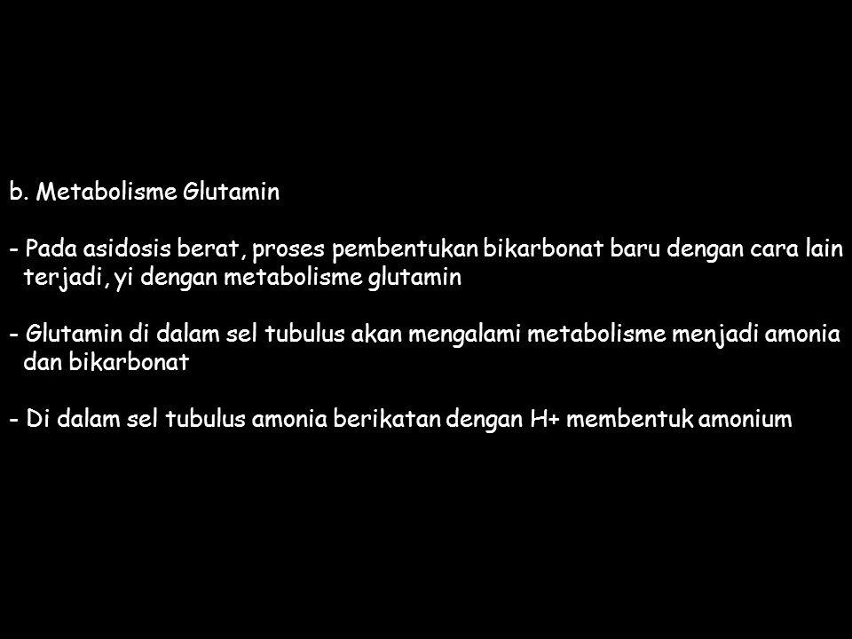 b. Metabolisme Glutamin